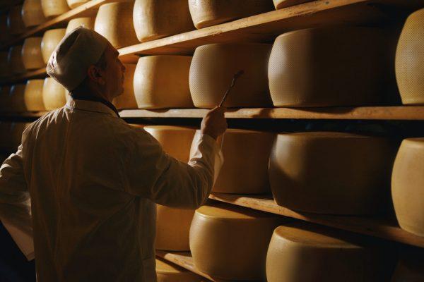 Lager-Mitarbeiter/in in der Käse-Produktion